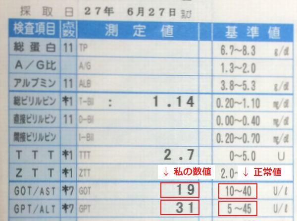 肝臓のGOT値とGOT値が正常値に戻った血液検査の結果