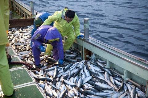 の 意味 漁夫 利 漁夫の利とは